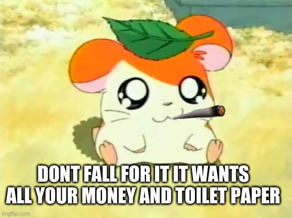 Hamtaro |  DONT FALL FOR IT IT WANTS ALL YOUR MONEY AND TOILET PAPER | image tagged in memes,hamtaro | made w/ Imgflip meme maker