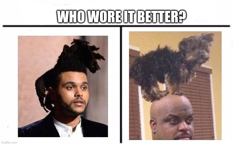 who wore it better? |  WHO WORE IT BETTER? | image tagged in memes,who would win,who wore it better | made w/ Imgflip meme maker