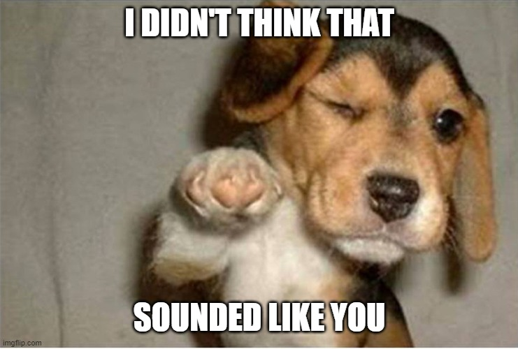 Dog pointing | I DIDN'T THINK THAT SOUNDED LIKE YOU | image tagged in dog pointing | made w/ Imgflip meme maker