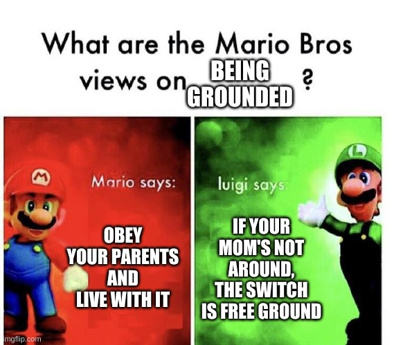 Mario Bros Views |  BEING GROUNDED; OBEY YOUR PARENTS AND LIVE WITH IT; IF YOUR MOM'S NOT AROUND, THE SWITCH IS FREE GROUND | image tagged in mario bros views | made w/ Imgflip meme maker