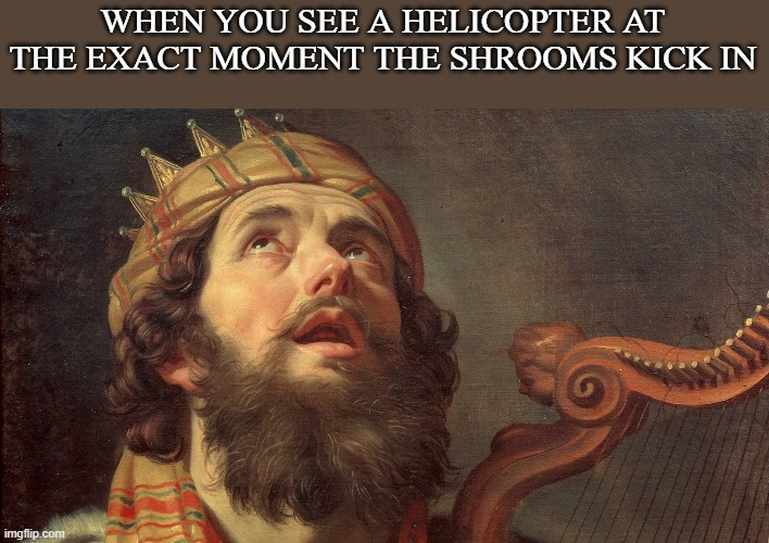 A trip fit for a king |  WHEN YOU SEE A HELICOPTER AT THE EXACT MOMENT THE SHROOMS KICK IN | image tagged in historical meme,the bible | made w/ Imgflip meme maker