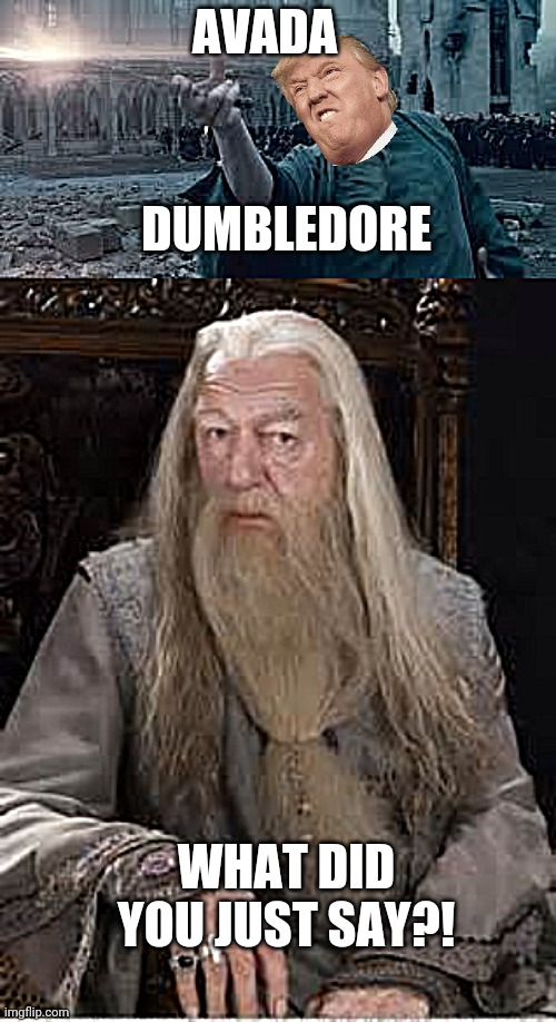 DUMBLEDORE; AVADA; WHAT DID YOU JUST SAY?! | image tagged in voldemort,dumbledore | made w/ Imgflip meme maker
