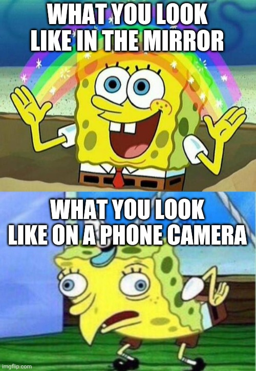 WHAT YOU LOOK LIKE IN THE MIRROR; WHAT YOU LOOK LIKE ON A PHONE CAMERA | image tagged in spongebob rainbow,memes,mocking spongebob,camera,mirror | made w/ Imgflip meme maker