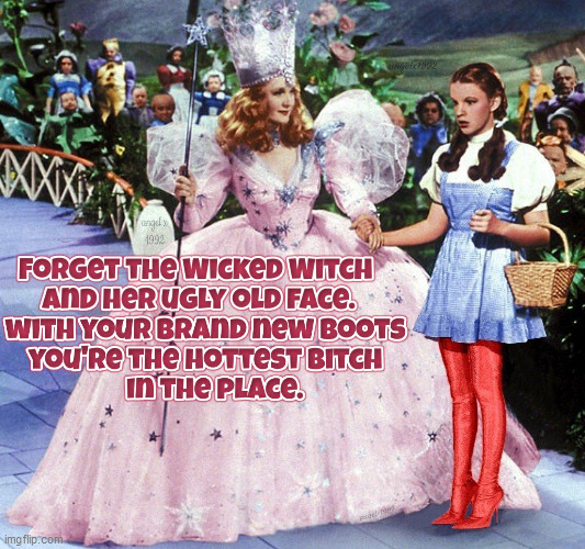 image tagged in wizard of oz,dorothy,wicked witch,bitch,boots,shoes | made w/ Imgflip meme maker