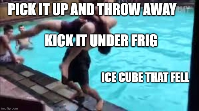 WE'VE ALL Done this |  PICK IT UP AND THROW AWAY; KICK IT UNDER FRIG; ICE CUBE THAT FELL | image tagged in no good can come of this,lazy,ice cube | made w/ Imgflip meme maker
