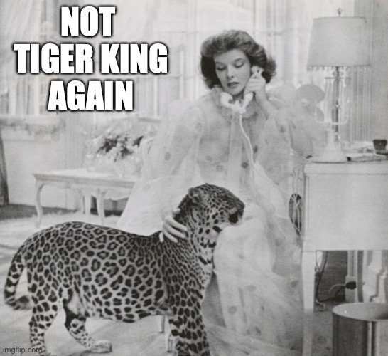 Tiger King Binge |  NOT  TIGER KING AGAIN | image tagged in tiger king,audry hepburn,binge watch,tiger,king,leopard | made w/ Imgflip meme maker