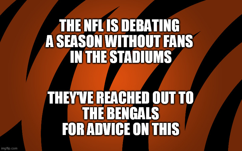 Not a Fan |  THE NFL IS DEBATING  A SEASON WITHOUT FANS  IN THE STADIUMS; THEY'VE REACHED OUT TO  THE BENGALS  FOR ADVICE ON THIS | image tagged in covid-19,cincinnati,bengals,nfl,football | made w/ Imgflip meme maker