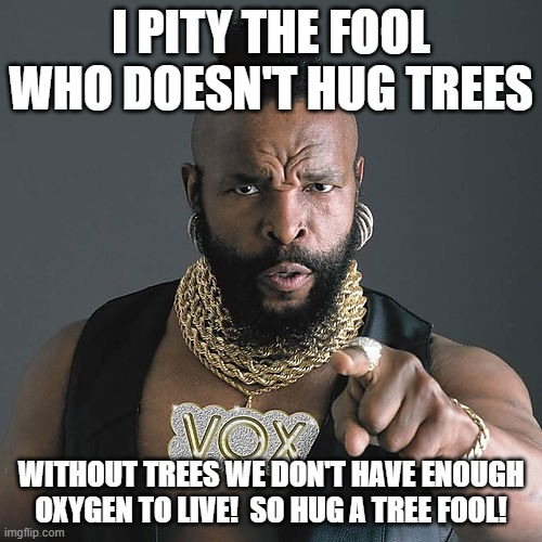 Mr T Pity The Fool |  I PITY THE FOOL WHO DOESN'T HUG TREES; WITHOUT TREES WE DON'T HAVE ENOUGH OXYGEN TO LIVE!  SO HUG A TREE FOOL! | image tagged in memes,mr t pity the fool | made w/ Imgflip meme maker