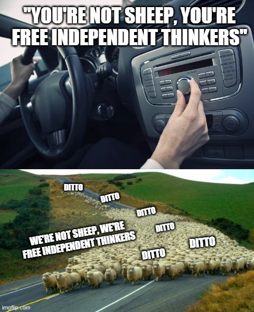 "The radio said I was a free independent thinker |  ""YOU'RE NOT SHEEP, YOU'RE FREE INDEPENDENT THINKERS""; DITTO; DITTO; DITTO; DITTO; WE'RE NOT SHEEP, WE'RE FREE INDEPENDENT THINKERS; DITTO; DITTO 