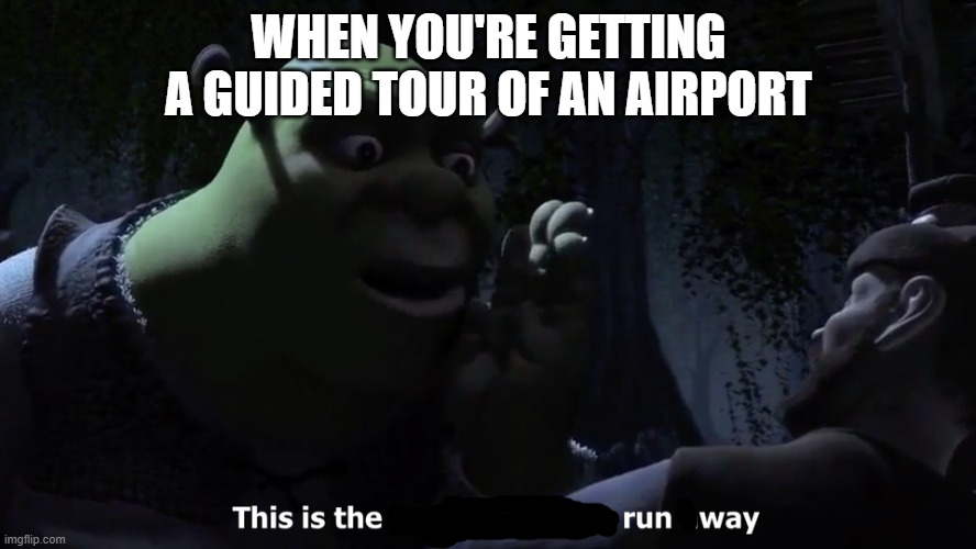 what's this type of meme called? |  WHEN YOU'RE GETTING A GUIDED TOUR OF AN AIRPORT | image tagged in memes,shrek,airport | made w/ Imgflip meme maker