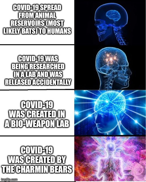 GALAXY BRAIN |  COVID-19 SPREAD FROM ANIMAL RESERVOIRS (MOST LIKELY BATS) TO HUMANS; COVID-19 WAS BEING RESEARCHED IN A LAB AND WAS RELEASED ACCIDENTALLY; COVID-19 WAS CREATED IN A BIO-WEAPON LAB; COVID-19 WAS CREATED BY THE CHARMIN BEARS | image tagged in galaxy brain | made w/ Imgflip meme maker