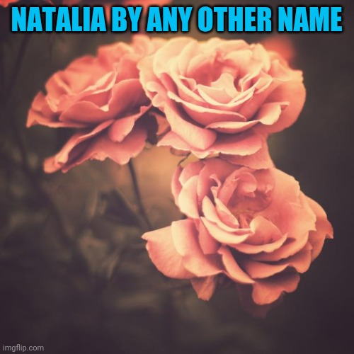 Is that your real name? It's a beautiful one:) |  NATALIA BY ANY OTHER NAME | image tagged in beautiful vintage flowers | made w/ Imgflip meme maker