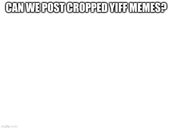 Blank White Template |  CAN WE POST CROPPED YIFF MEMES? | image tagged in blank white template | made w/ Imgflip meme maker