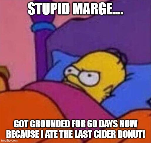 Quarantine now in effect until mid May |  STUPID MARGE.... GOT GROUNDED FOR 60 DAYS NOW BECAUSE I ATE THE LAST CIDER DONUT! | image tagged in angry homer simpson in bed,donuts,corona virus,2020 | made w/ Imgflip meme maker