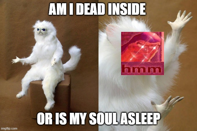 Persian Cat Room Guardian |  AM I DEAD INSIDE; OR IS MY SOUL ASLEEP | image tagged in memes,persian cat room guardian | made w/ Imgflip meme maker
