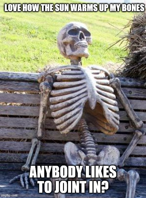 Waiting Skeleton |  LOVE HOW THE SUN WARMS UP MY BONES; ANYBODY LIKES TO JOINT IN? | image tagged in memes,waiting skeleton | made w/ Imgflip meme maker