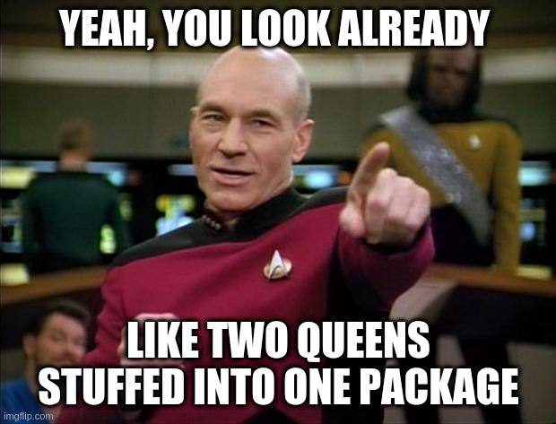 Picard | YEAH, YOU LOOK ALREADY LIKE TWO QUEENS STUFFED INTO ONE PACKAGE | image tagged in picard | made w/ Imgflip meme maker