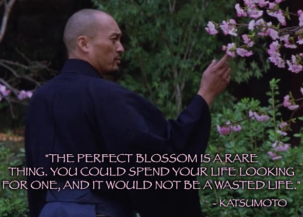 "They are all Perfect |  ""THE PERFECT BLOSSOM IS A RARE THING. YOU COULD SPEND YOUR LIFE LOOKING FOR ONE, AND IT WOULD NOT BE A WASTED LIFE.""; - KATSUMOTO 