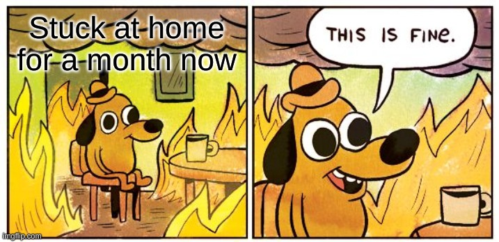 This Is INDEED Fine |  Stuck at home for a month now | image tagged in memes,this is fine,quarantine,home,month | made w/ Imgflip meme maker