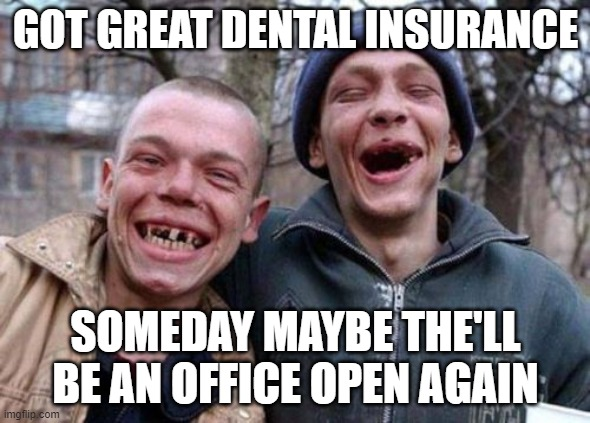 Ugly Twins |  GOT GREAT DENTAL INSURANCE; SOMEDAY MAYBE THE'LL BE AN OFFICE OPEN AGAIN | image tagged in memes,ugly twins | made w/ Imgflip meme maker