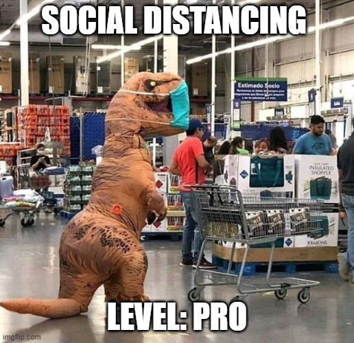 social distance |  SOCIAL DISTANCING; LEVEL: PRO | image tagged in t rex | made w/ Imgflip meme maker