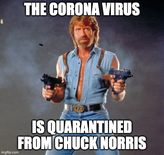 Chuck Norris Guns |  THE CORONA VIRUS; IS QUARANTINED FROM CHUCK NORRIS | image tagged in memes,chuck norris guns,chuck norris | made w/ Imgflip meme maker