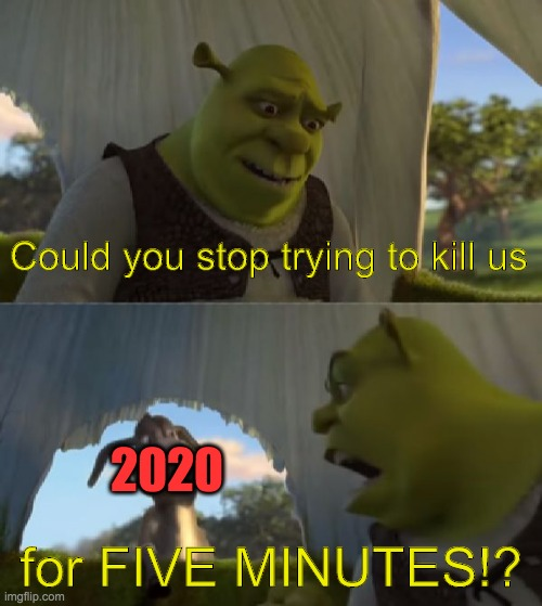 Could you not ___ for 5 MINUTES |  Could you stop trying to kill us; 2020; for FIVE MINUTES!? | image tagged in could you not ___ for 5 minutes | made w/ Imgflip meme maker