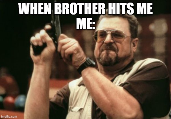 Am I The Only One Around Here |  WHEN BROTHER HITS ME ME: | image tagged in memes,am i the only one around here | made w/ Imgflip meme maker
