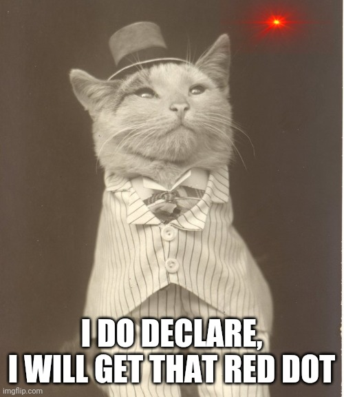 Aristocat |  I DO DECLARE, I WILL GET THAT RED DOT | image tagged in aristocat | made w/ Imgflip meme maker