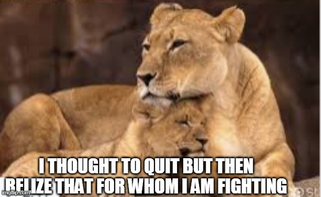 motivation |  I THOUGHT TO QUIT BUT THEN RELIZE THAT FOR WHOM I AM FIGHTING | image tagged in inspirational quote | made w/ Imgflip meme maker