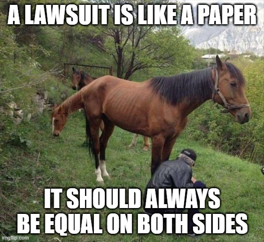 dhdhdhdhdhd |  A LAWSUIT IS LIKE A PAPER; IT SHOULD ALWAYS BE EQUAL ON BOTH SIDES | image tagged in memes,horsepower | made w/ Imgflip meme maker