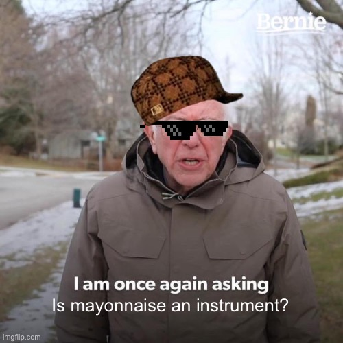 Bernie I Am Once Again Asking For Your Support |  Is mayonnaise an instrument? | image tagged in memes,bernie i am once again asking for your support | made w/ Imgflip meme maker
