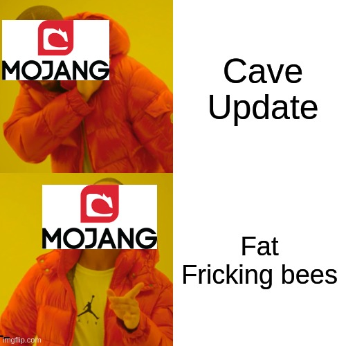 Drake Hotline Bling Meme |  Cave Update; Fat Fricking bees | image tagged in memes,drake hotline bling | made w/ Imgflip meme maker