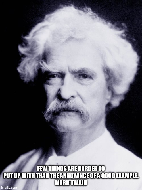 Mark Twain quote on annoyance |  FEW THINGS ARE HARDER TO PUT UP WITH THAN THE ANNOYANCE OF A GOOD EXAMPLE. MARK TWAIN | image tagged in inspirational quote | made w/ Imgflip meme maker
