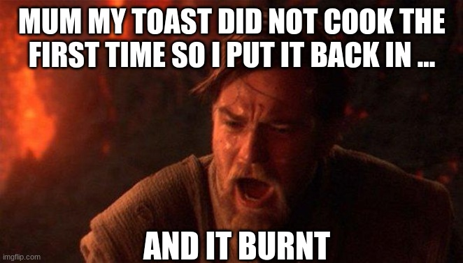 You Were The Chosen One (Star Wars) |  MUM MY TOAST DID NOT COOK THE FIRST TIME SO I PUT IT BACK IN ... AND IT BURNT | image tagged in memes,you were the chosen one star wars | made w/ Imgflip meme maker
