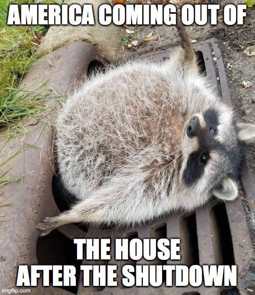 America coming out of the house |  AMERICA COMING OUT OF; THE HOUSE AFTER THE SHUTDOWN | image tagged in government shutdown,shelter in place,covid-19 | made w/ Imgflip meme maker