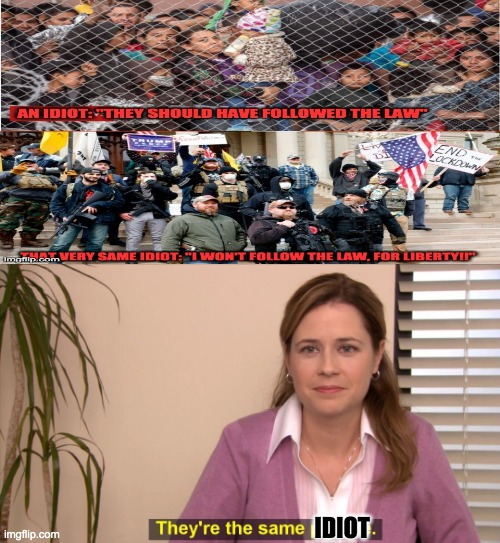 The Office Pam |  IDIOT | image tagged in the office pam | made w/ Imgflip meme maker