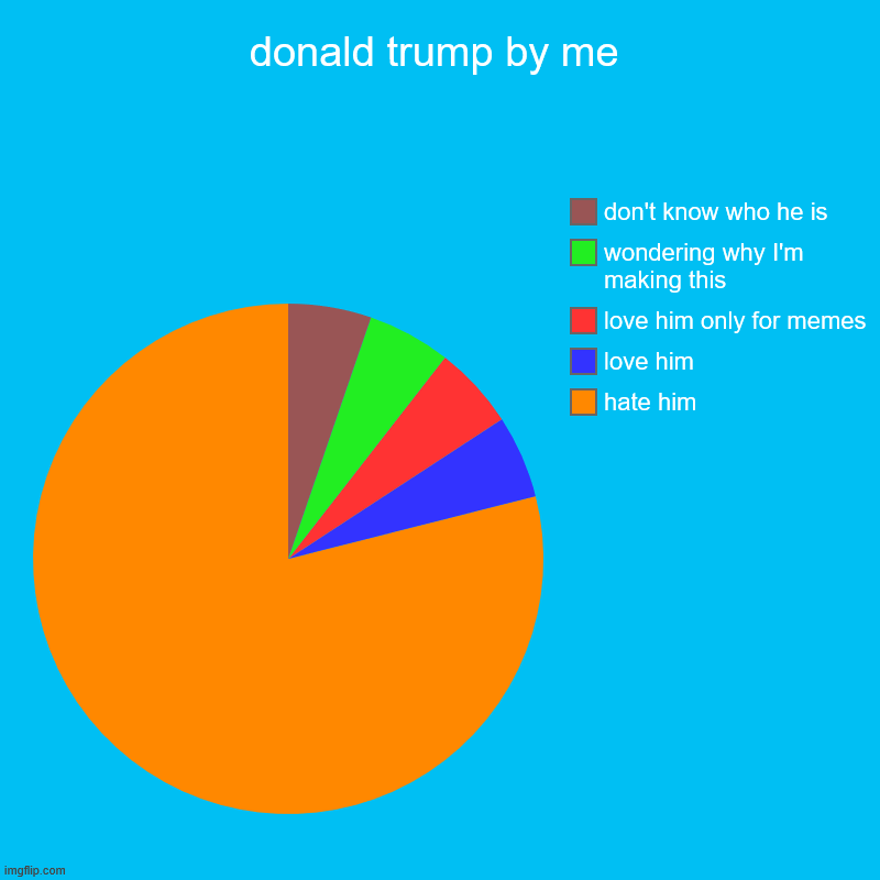 donald trump by me | hate him, love him, love him only for memes, wondering why I'm making this, don't know who he is | image tagged in charts,pie charts | made w/ Imgflip chart maker