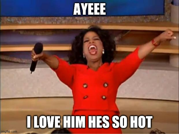 Oprah You Get A Meme | AYEEE I LOVE HIM HES SO HOT | image tagged in memes,oprah you get a | made w/ Imgflip meme maker