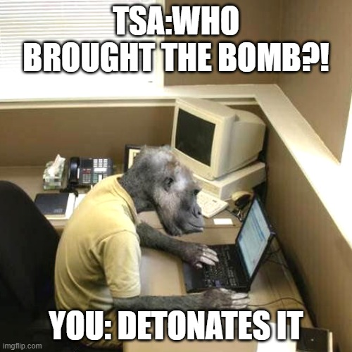 Monkey Business |  TSA:WHO BROUGHT THE BOMB?! YOU: DETONATES IT | image tagged in memes,monkey business | made w/ Imgflip meme maker