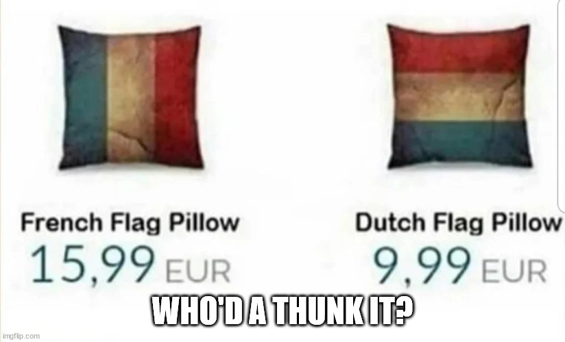 Who'd ah Thunk it? |  WHO'D A THUNK IT? | image tagged in captain obvious,funny,sale | made w/ Imgflip meme maker