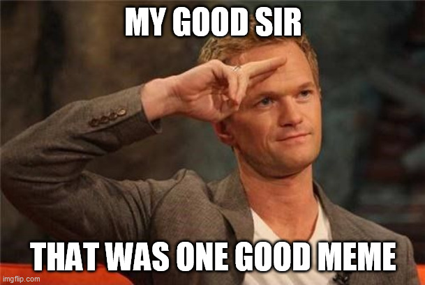 MY GOOD SIR THAT WAS ONE GOOD MEME | image tagged in barney stinson salute | made w/ Imgflip meme maker
