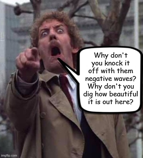Let's see who gets this. :) |  Why don't you knock it off with them negative waves? Why don't you dig how beautiful it is out here? | image tagged in invasion of the body snatchers donald sutherland,memes,kelly's heroes | made w/ Imgflip meme maker