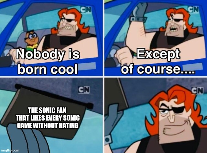 Nobody is born cool |  THE SONIC FAN  THAT LIKES EVERY SONIC GAME WITHOUT HATING | image tagged in nobody is born cool | made w/ Imgflip meme maker