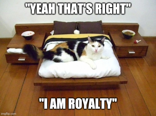"SPOILED |  ""YEAH THAT'S RIGHT""; ""I AM ROYALTY"" 