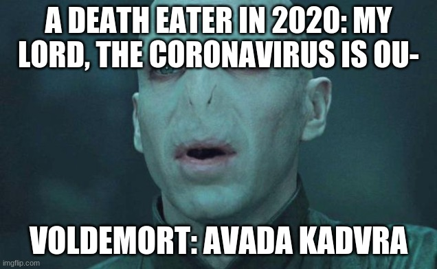 Voldemort |  A DEATH EATER IN 2020: MY LORD, THE CORONAVIRUS IS OU-; VOLDEMORT: AVADA KADVRA | image tagged in voldemort | made w/ Imgflip meme maker