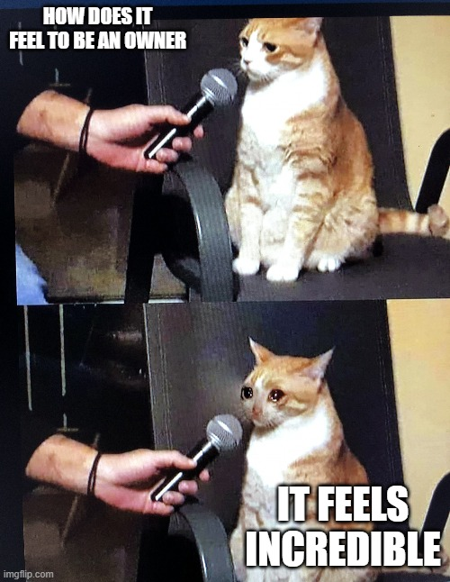 Cat interview crying |  HOW DOES IT FEEL TO BE AN OWNER; IT FEELS INCREDIBLE | image tagged in cat interview crying | made w/ Imgflip meme maker