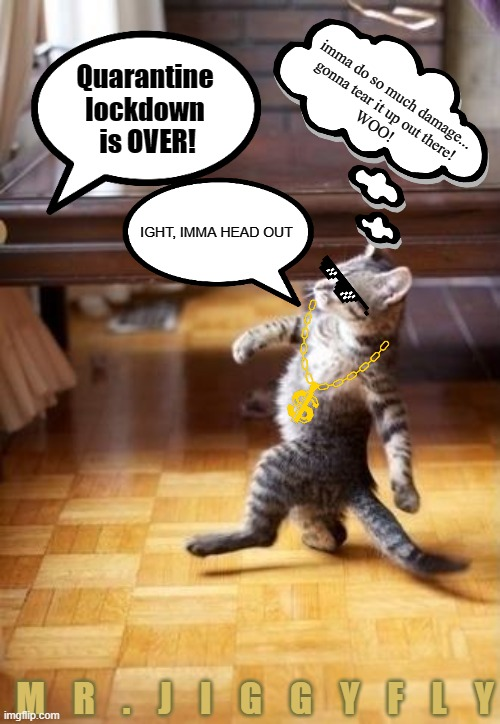 Cool Cat Stroll |  Quarantine lockdown  is OVER! imma do so much damage... gonna tear it up out there! WOO! IGHT, IMMA HEAD OUT; M    R    .    J    I    G    G    Y    F    L    Y | image tagged in memes,cool cat stroll,coronavirus,quarantine,lockdown,freedom | made w/ Imgflip meme maker