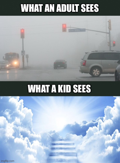 We're In The Clouds |  WHAT AN ADULT SEES; WHAT A KID SEES | image tagged in fog,heaven,foggy,kids,clouds,weather | made w/ Imgflip meme maker