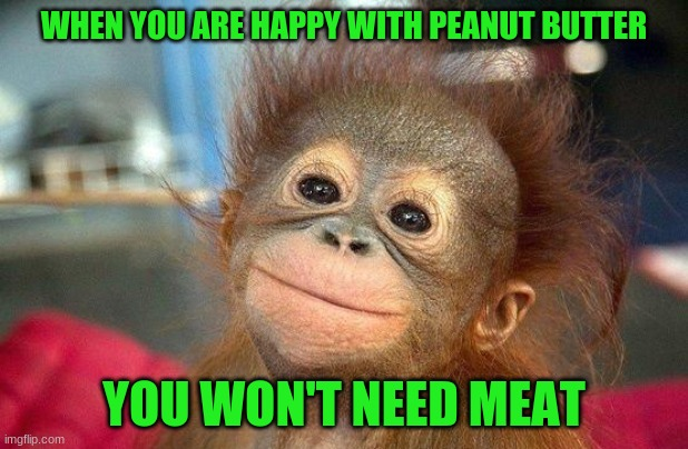 vegan |  WHEN YOU ARE HAPPY WITH PEANUT BUTTER; YOU WON'T NEED MEAT | image tagged in optimism | made w/ Imgflip meme maker